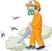 رش دفان شركة رش دفان بالضمان مكافحة حشرات