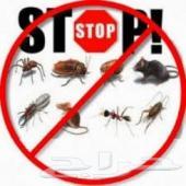 شركه رش مبيدات مع (((الضمان ))) الرياض