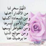 الرياض حي النظيم