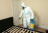 شركه تنظيف ورش حشرات بالمدينه