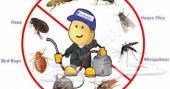 رش مبيدات مكافحه حشرات رش دفان تنظيف شقق فلل