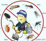 رش مبيدات ومكافحة حشرات كشف تسربات المياه عزل