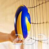 كرة الطائرة مع الشبك عرض خاص