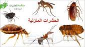 مكافحة حشرات رش مبيد شركة رش مبيد الحشرات