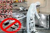 مكافحة حشرات بجده رش مبيدات بجده
