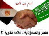 خدمات و وساطة في مصر