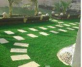مزارع النخيل لتصميم الحدائق