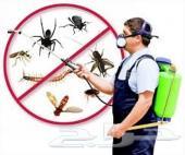 رش مبيدات مكافحه حشرات البق صراصير نمل فيران