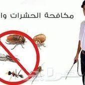 شركه رش حشرات بالمدينة تنظيف خزانات بالمدينة
