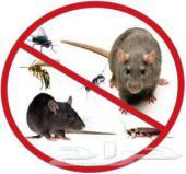 مكافحة حشرات بالرياض تنظيف منازل مجالس خزانات