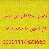 سائقين وعمال وفنين ومهندسين ومحاسبين من مصر