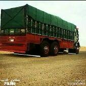 شركة نقل عفش بالرياض