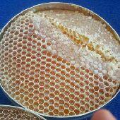عسل طبيعي100 اصلي ومضمون على الفحص وشحن مجاني