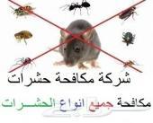 شركة تنظيف و رش مبيدات ومكافحة حشرات بالرياض