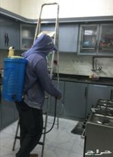 شركة رش مبيدات بخميس مشيط بالضمان مواد آمنة