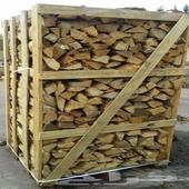 حطب اوربي مجفف للتصدير من اوكرانيا