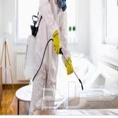 مكافحة حشرات نمل صراصيررش مبيدات تعقيم منازل