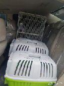 توصيل قطط وكلاب الشرقية_الرياض_المدينة_جدة