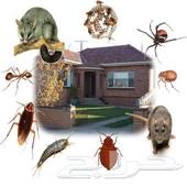 رش مبيدات مكافحه حشرات صراصير نمل بق