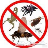 مكافحة حشرات رش مبيد صراصير نمل وزغ فئران نام