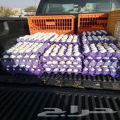 بيض دجاج للبيع