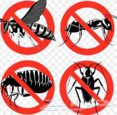 رش مبيد رش مبيدات شركة رش مبيدات حشرية مكافحة