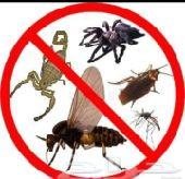 شركه رش مبيد مكافحة حشرات رش دفان بجده
