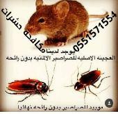 مكافحة حشرات رش مبيد الحشرات nابادة الحشرات