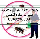 شركة نظافة عامة ومكافحة حشرات