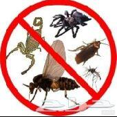 رش حشرات بجدة وغسيل خزانات وشقق بجده