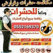 شركة رش مبيدات رش دفان رش صراصير رش النمل رش