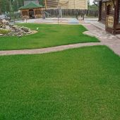تنسيق حدائق وتركيب العشب الصناعي والطبيعي