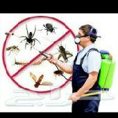 شركة تنظيف الخزانات ومكافحه حشرات بالمدينة
