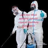شركة مكافحة حشرات وتعقيم ورش مبيد بالدمام
