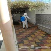 شركة رش حشرات بالمدينة المنورة 0541501351