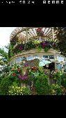 تنسيق حدائق واستراحات وملاعب وعشب جداري شلال