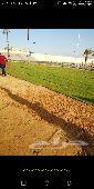 تنسيق حدائق وتركيب الثيل الطبيعي والصناعي