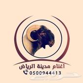 اضاحي اغنام مدينة الرياض