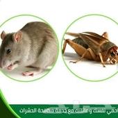 شركه مكافحة حشرات رشل النمل والصراصير