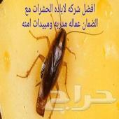 رش حشرات عته نمل ابيض مكافحه صراصير بق فئران
