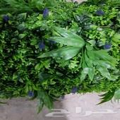تنسيق حدائق واسطح المنزل بالعشب الصناعي والجد