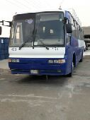 حافلة 50 راكب للبيع
