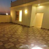 ملحق 5غرف مع سطح مستقل وشقة 3غرف غرف بأقل سعر