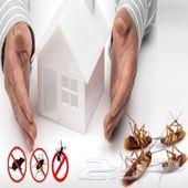 شركة رش مبيدات مكافحة حشرات مكافحة الصراصير