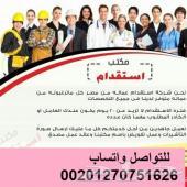 أكبر شركة توفير عمالة مصرية كل المجالات