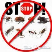 شركة رش مبيدات بالرياض (للمنازل)مكافحة حشرات