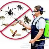 رش حشرات صراصير بق الفراش