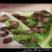 حلزون الحلزون الافريقي العملاق