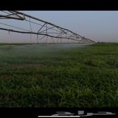 مزرعة للبيع   كيلو في كيلو