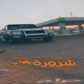 شاص 2017. مرهم 2020. بريمي سلق 11ريشه